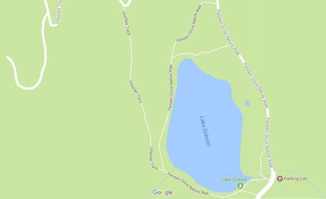 Lake Dobson and tracks 2.JPG