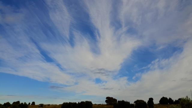 20180407_091058Morning sky.jpg
