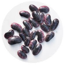 Scarlet runner bean seed