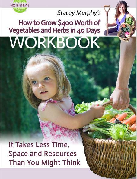 Stacey Murphys veg booklet